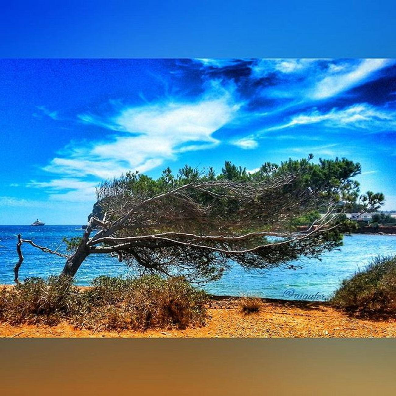 La fuerza del viento Ig_ibiza Instashot Todoclick Pg_mistica_romance Instantes_fotograficos H2o_natura Best2gram Descubriendoigers Estaes_espania Estaes_baleares Ig_great_pics Your_worldcaptures Monumentalspain Great_captures_ Insta_world_free Igphotoworld Ig_fotograf Monolith_spain Clouds Love_natura Sky_sultans Sky_painters Hdr_spain Hdr_professional Be_one_hdr hdr_photogram hdr_lovers total_hdr coolworld_hdr bindebros