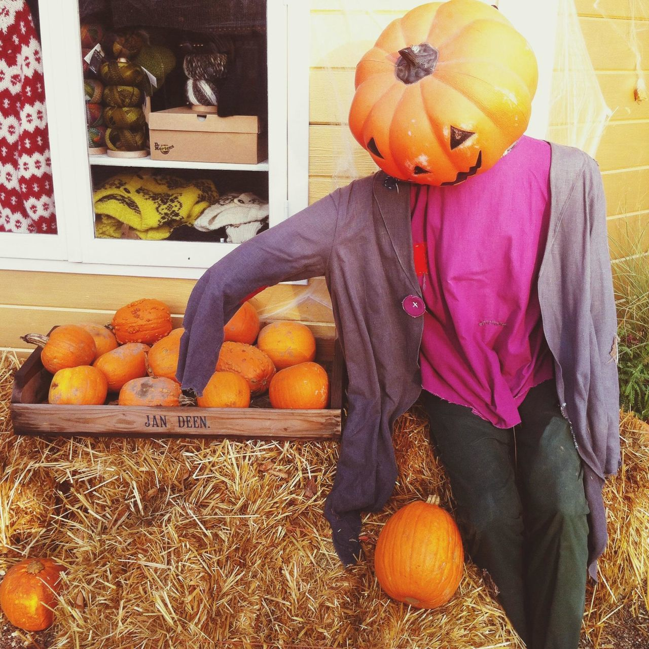 Pumpkinman chilling with its pumpkins. Halloween