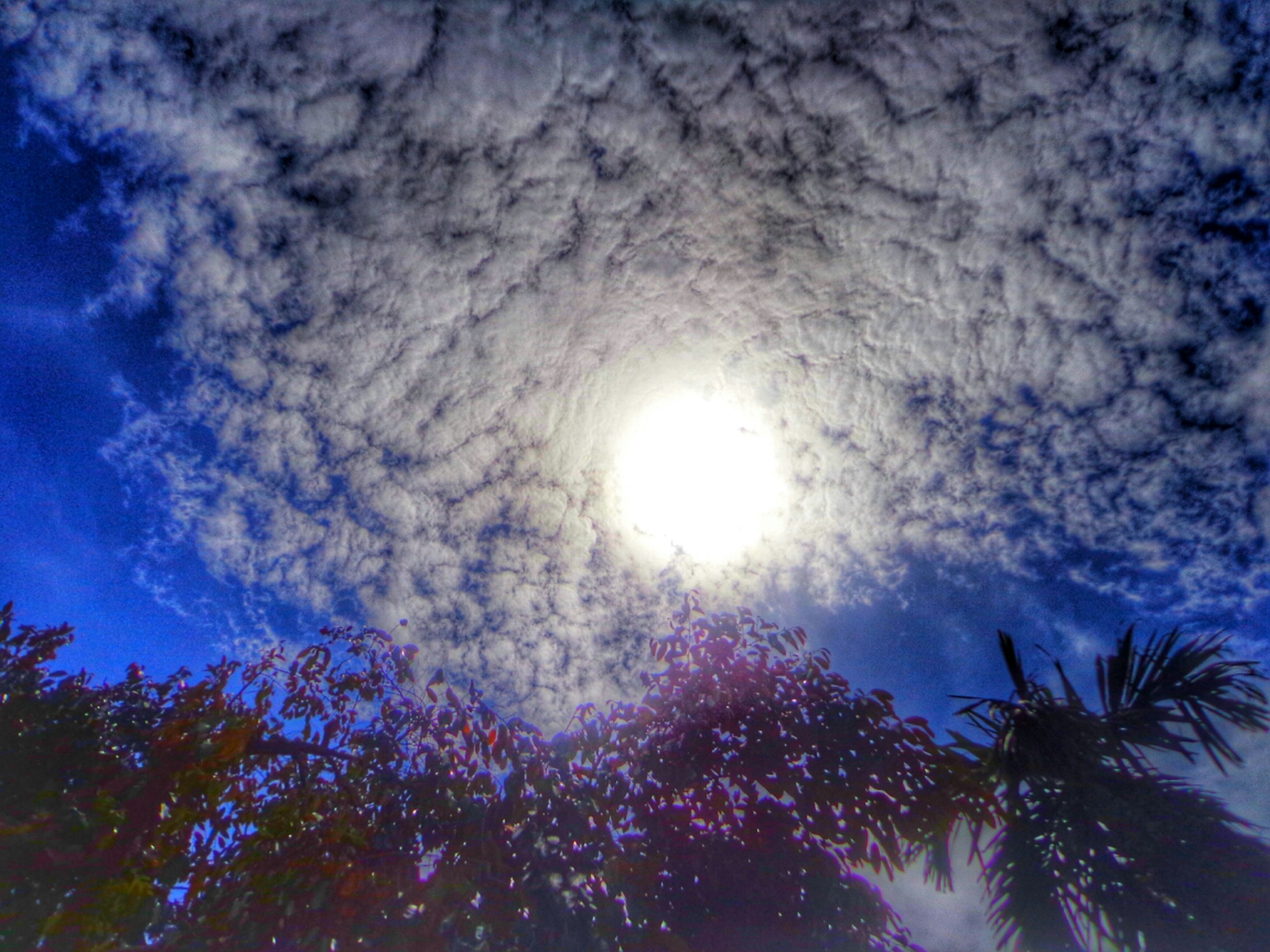 low angle view, sun, sky, tree, sunbeam, cloud - sky, sunlight, beauty in nature, lens flare, nature, tranquility, scenics, silhouette, blue, tranquil scene, bright, growth, cloudy, cloud, outdoors