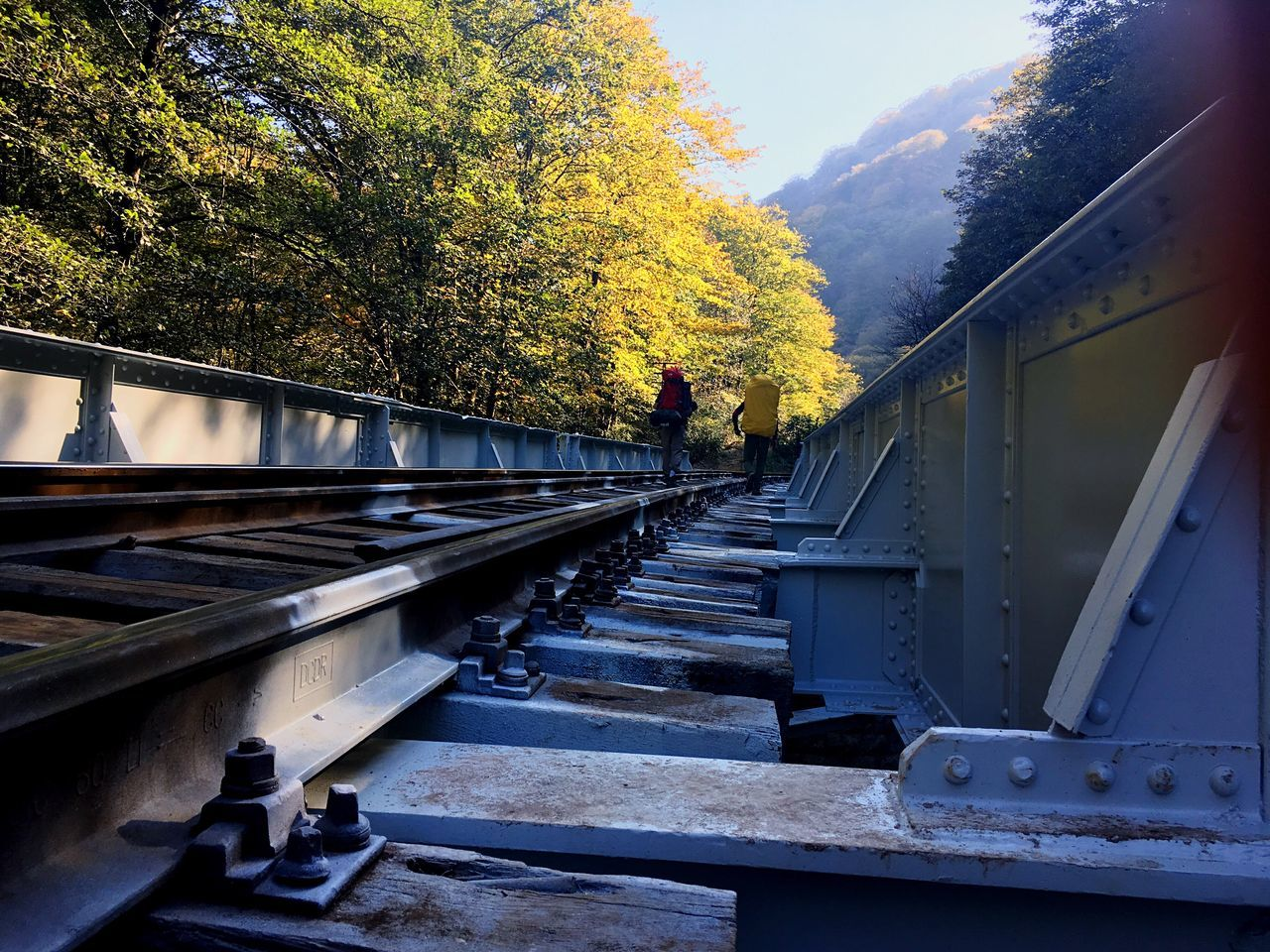 Tree Autumn Transportation Rail Transportation No People Nature Day Outdoors Beauty In Nature Sky