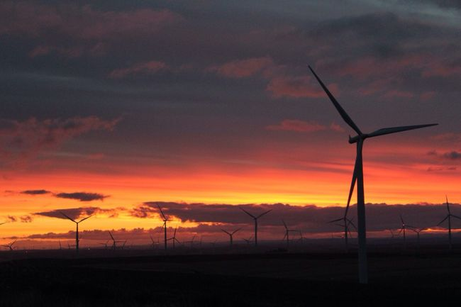 Good Morning! EyeEm Nature Lover Tadaa Community Sunrise At Work