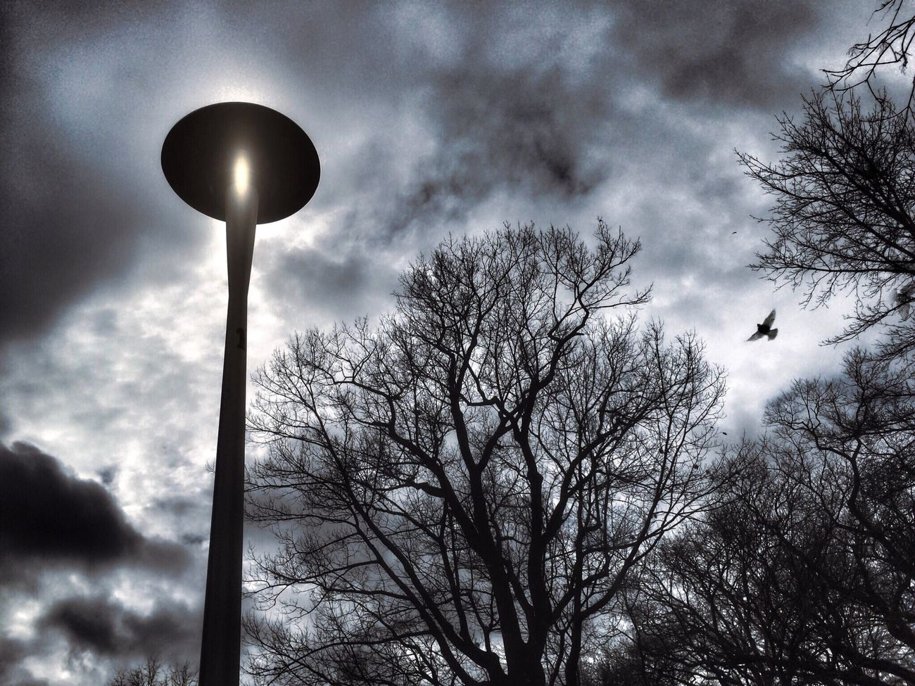 Lamp post. Street Lamp Monday IPhoneography Whispers Of Spring