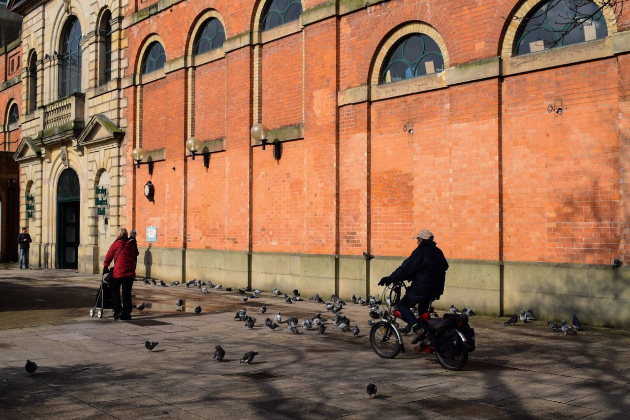 Building Exterior Mode Of Transport Street Real People Transportation Architecture City People Streetphotography Street Photography Colorful Derby Bicycle Pigeons Shadows & Lights