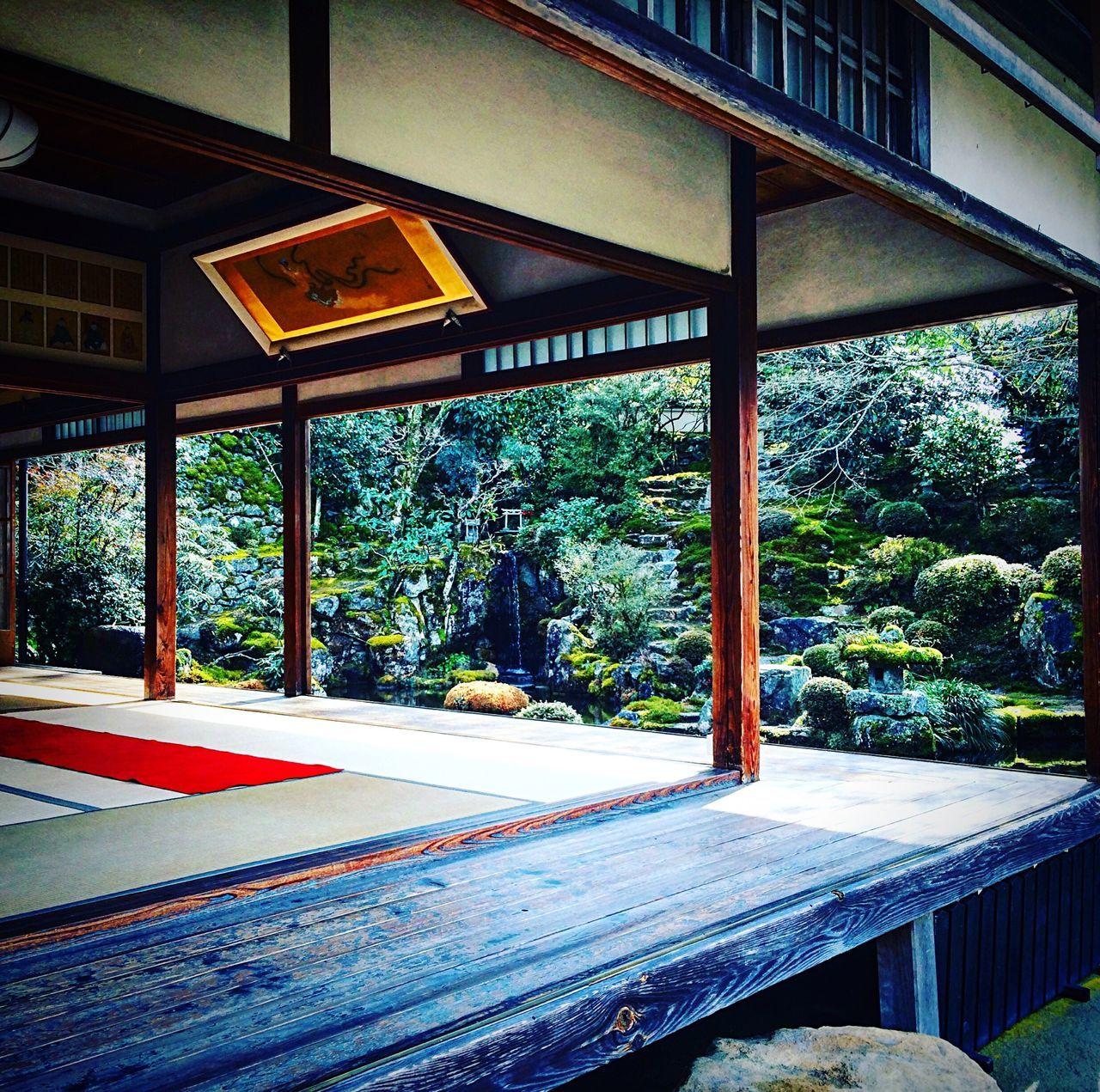 実光院 大原 京都 Kyoto 寺社仏閣 Relaxing