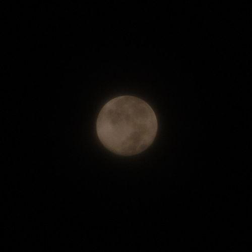 昨夜遅く、薄曇りの向こうの月。 The Moon behind slight cloud late last night. Pentax Q10 Supermoon Supermoon 2014