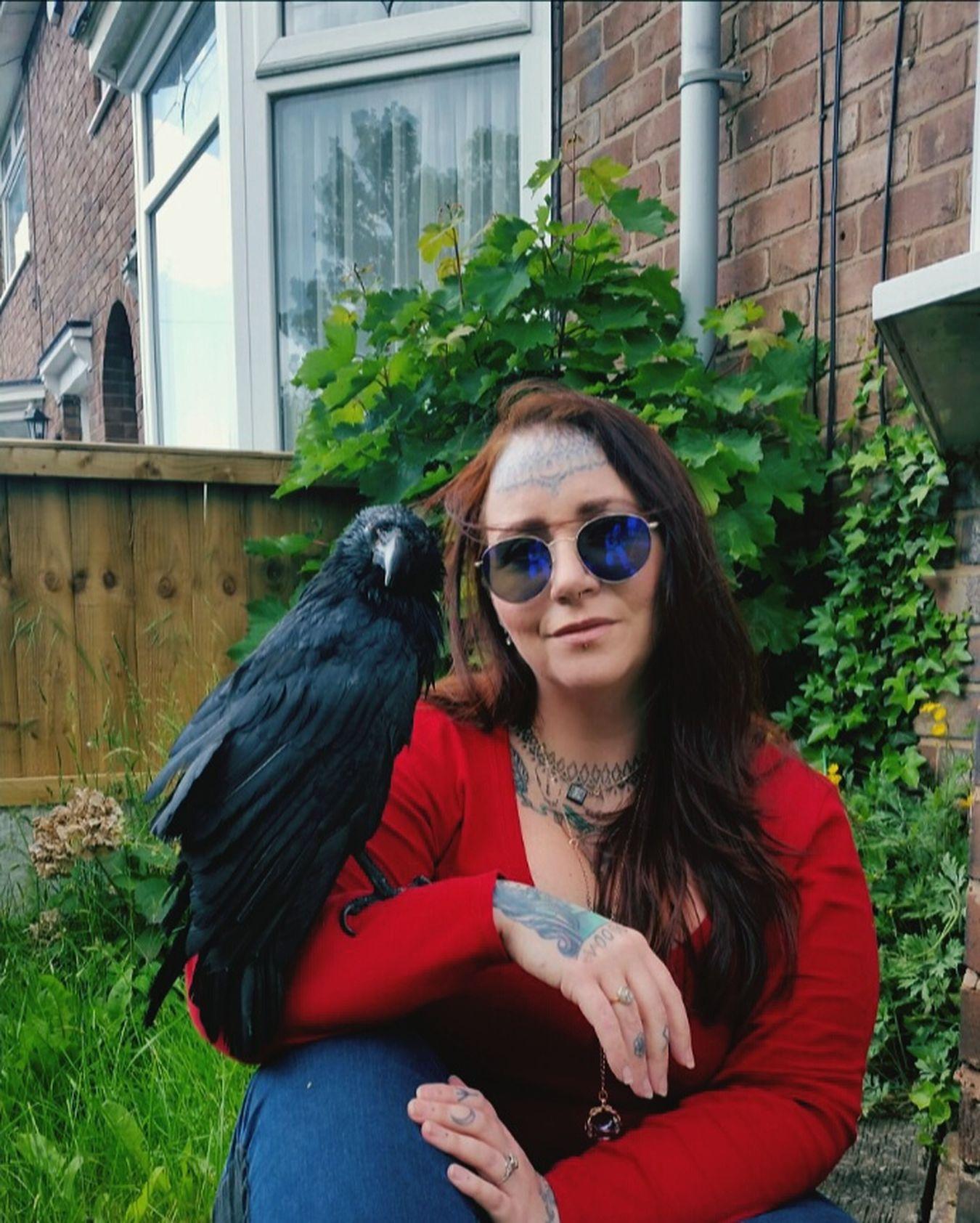 Me and rescue crow Archie :) Crow Rescue Rescuecrow Love Pet MyBoy Garden Selfie Petcrow Corvid