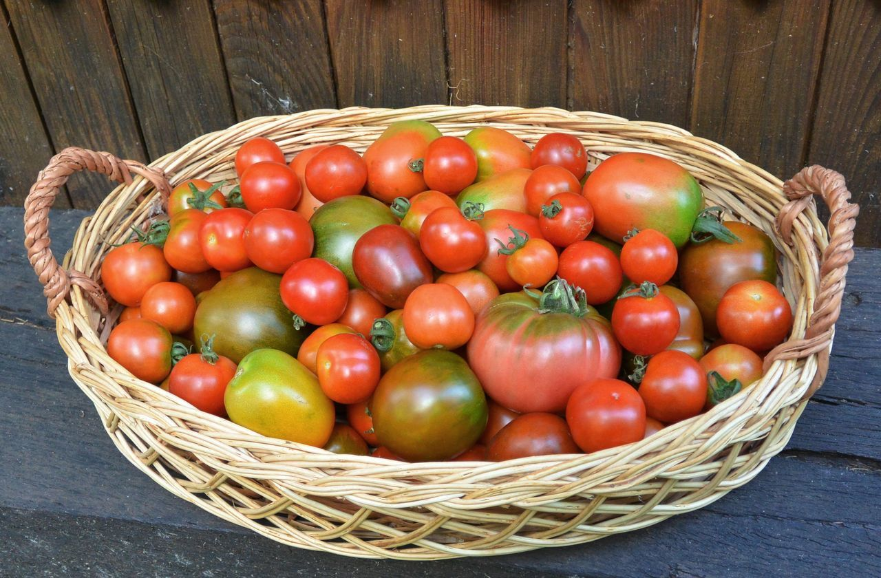 basket, vegetable, red, tomato, wood - material, food and drink, high angle view, food, freshness, day, outdoors, no people, healthy eating, close-up