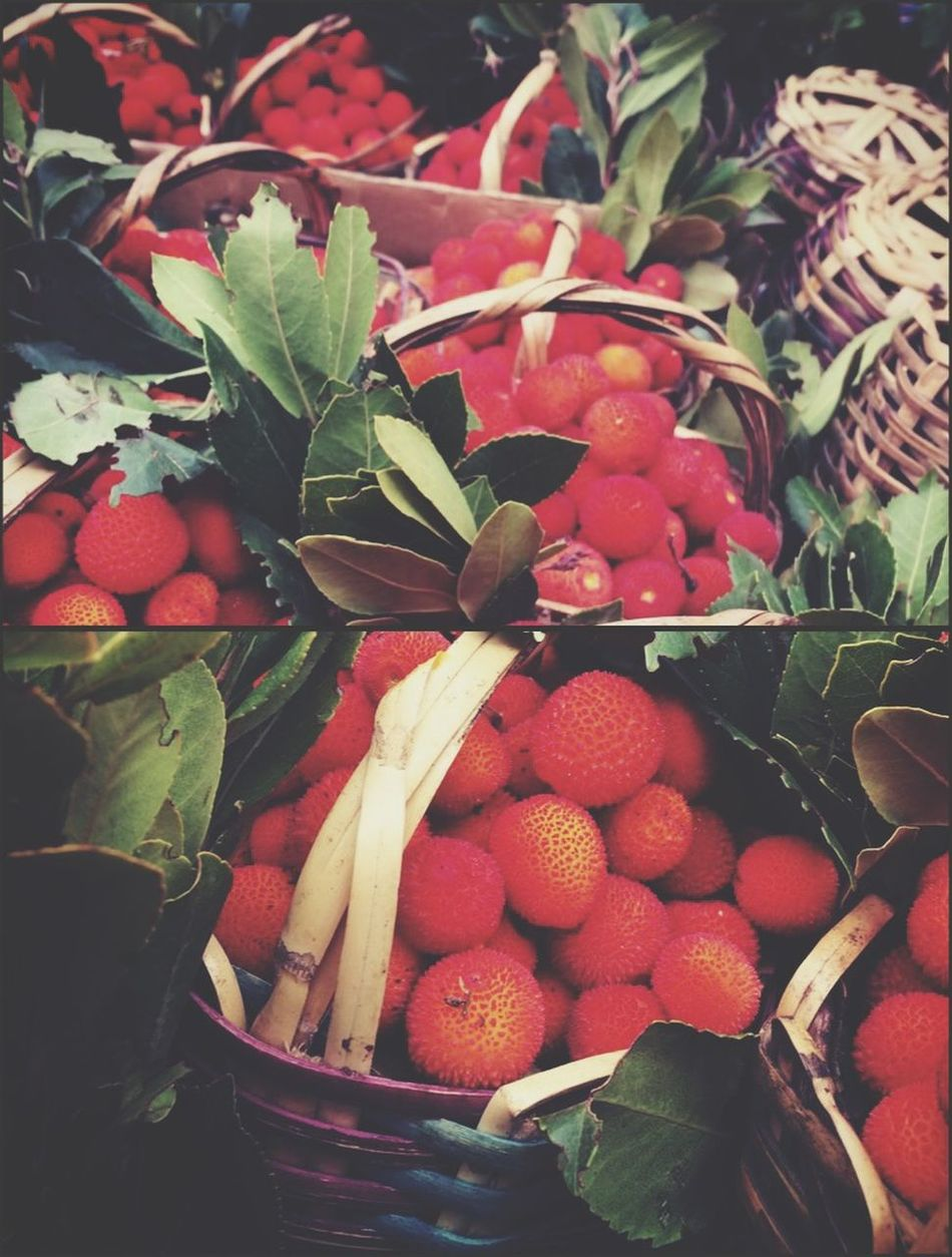 Beauty of fruits Berries Wildberries Freshness Autumn Autumn Colors Lens Cold Days Moroccan