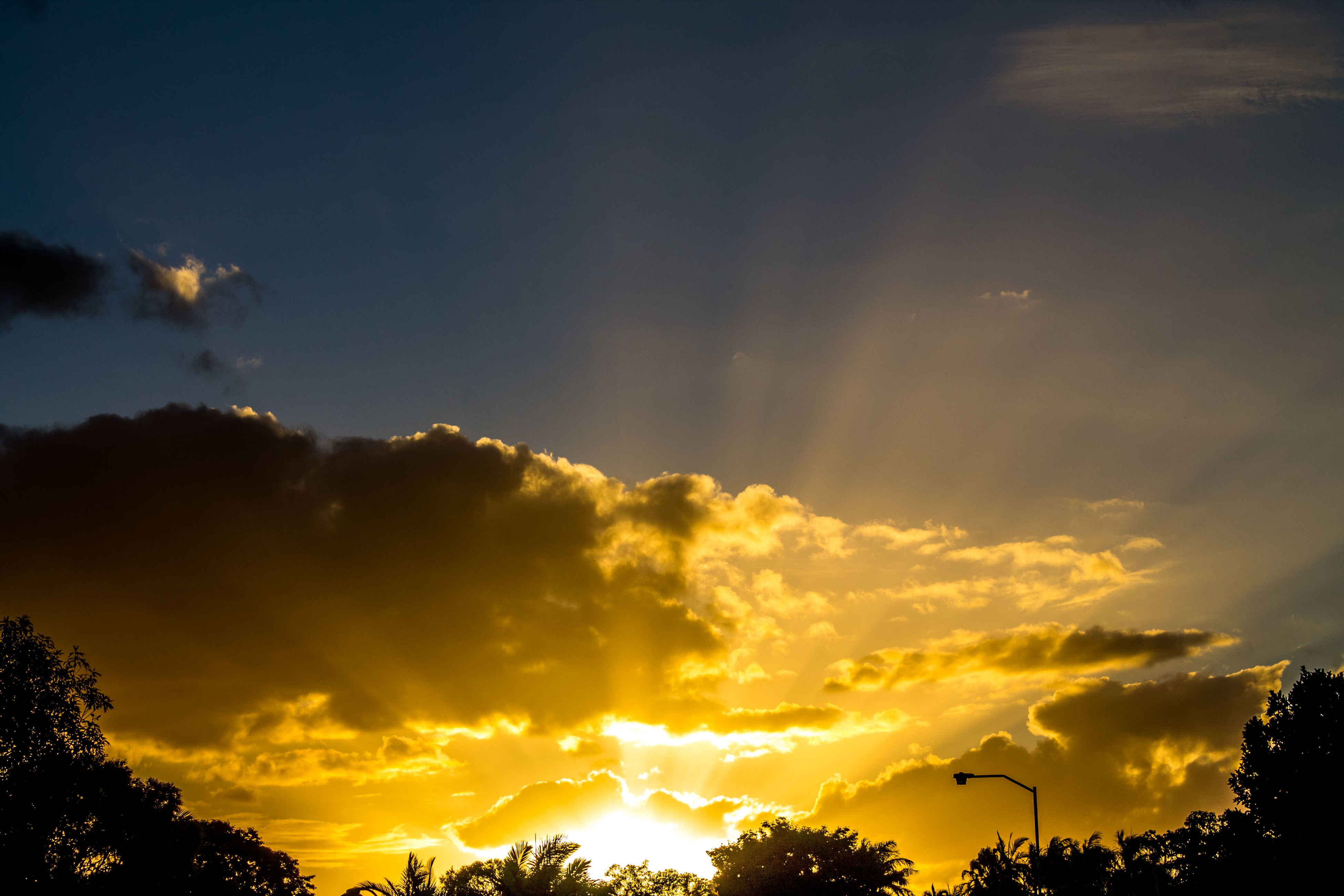 sunset, silhouette, sky, beauty in nature, scenics, low angle view, tree, orange color, tranquility, tranquil scene, nature, cloud - sky, sun, idyllic, cloud, sunlight, dramatic sky, outdoors, yellow, no people