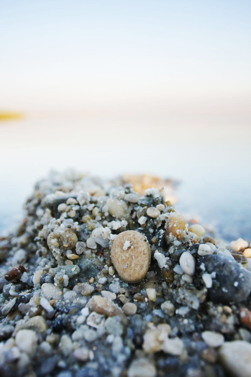 Abundance B Beauty In Nature Close-up Day Nature No People Outdoors Pebble Rock Rock - Object Scenics Selective Focus Selfie Shell Shore Sky Stone Stone - Object Surface Level Tranquil Scene Tranquility