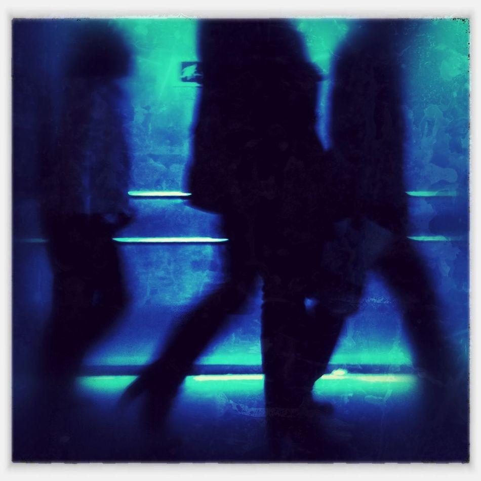 Shadow Walkers 5 Shadow Walkers 5