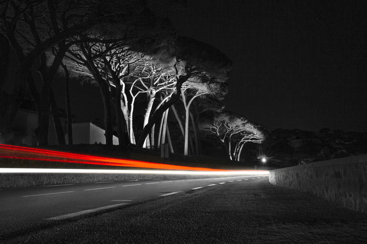 B&W long exposure with light trail + mediterranean flair! Bare Tree Black & White Black And White Photography Black&white Blurred Motion Curve Dark Empty Road Illuminated Light And Shadow Light Trail Long Exposure Longexposure Motion Night Night Lights Night View Nightphotography On The Road Road Speed Street Tail Light The Way Forward