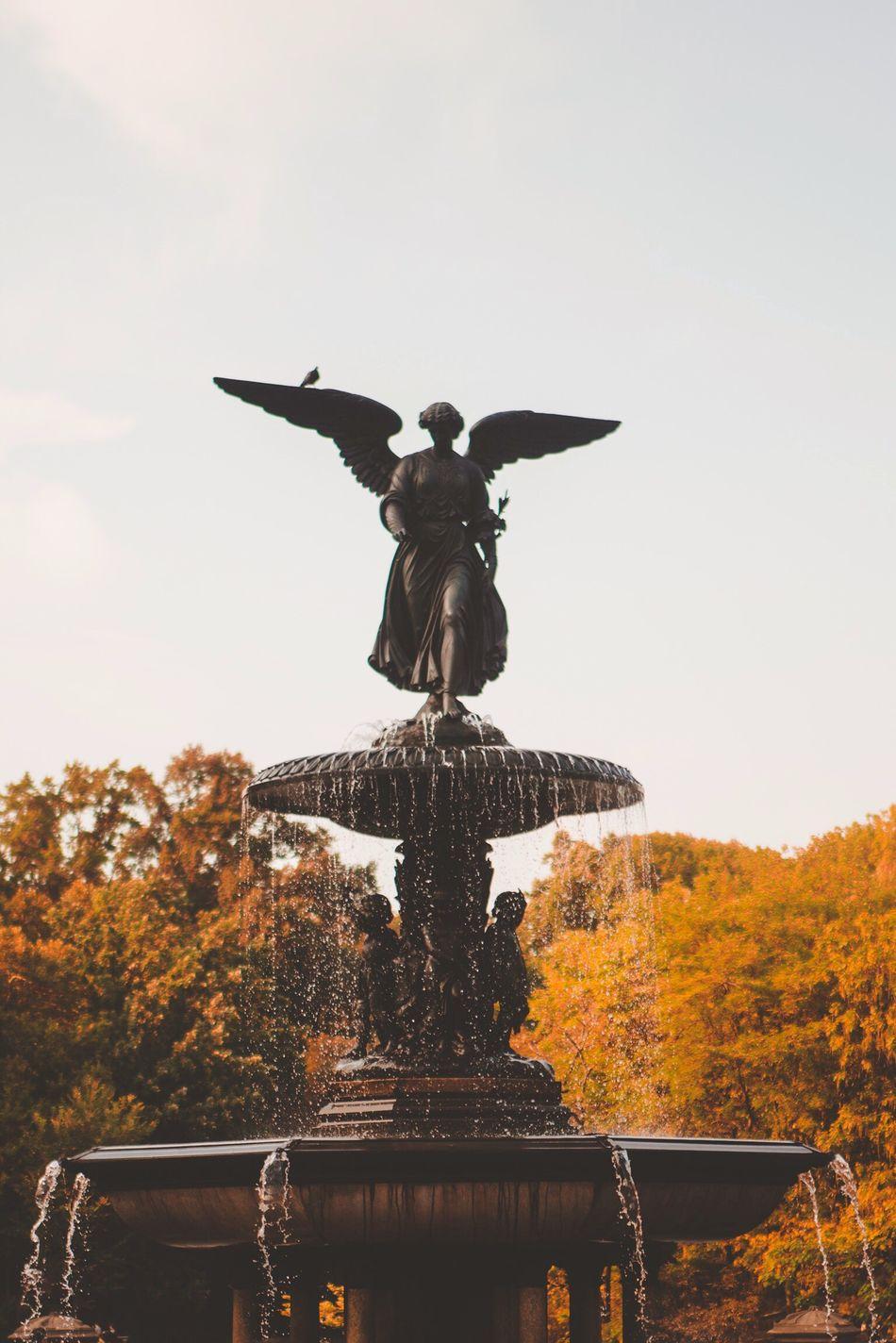 Beautiful stock photos of angel, Angel, Art And Craft, Autumn, Bethesda Fountain