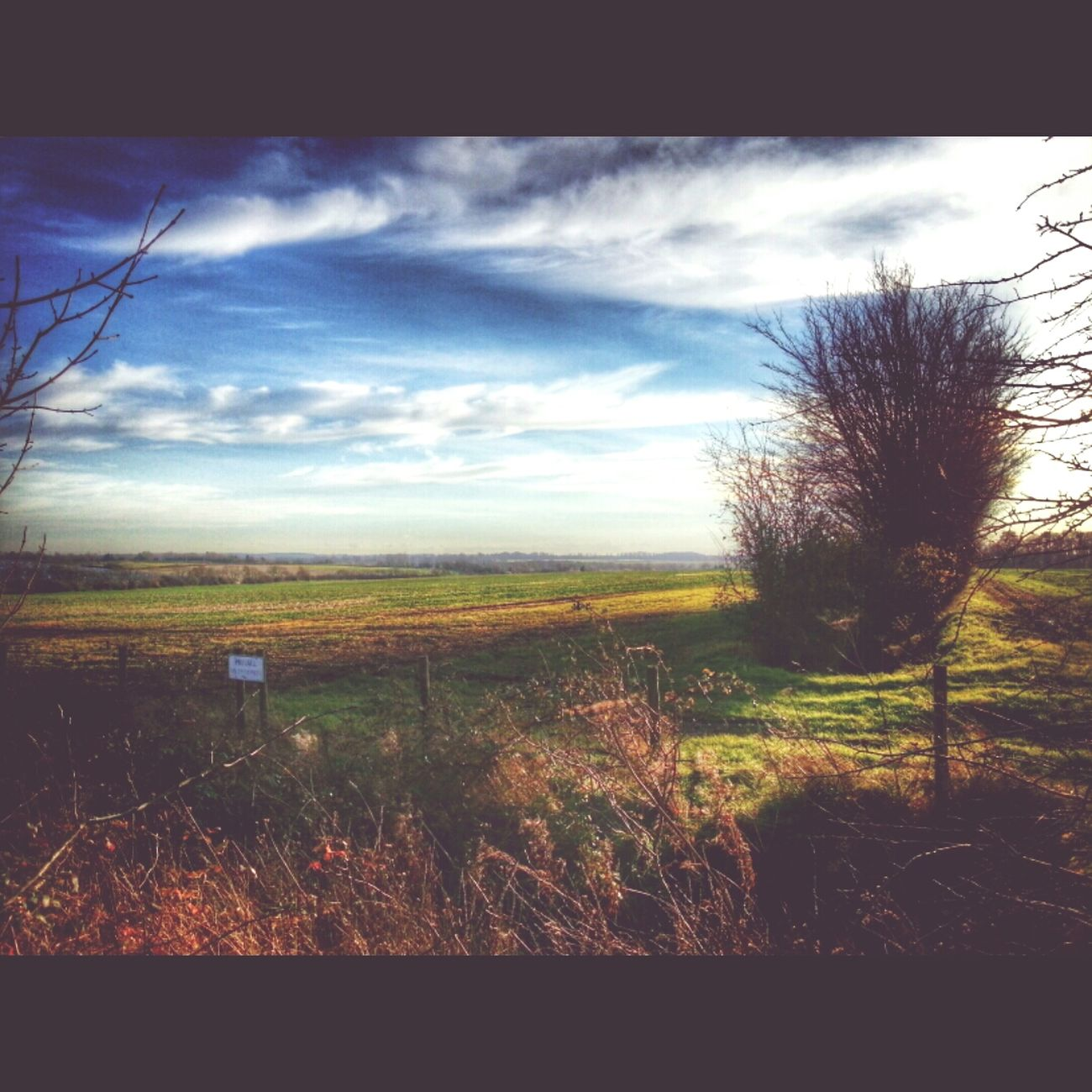 Cambridgeshire Papworth Everard Cambourne Fields