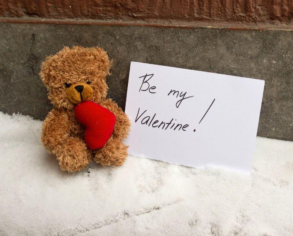 Beautiful stock photos of teddy bear, Berlin, Germany, Gift, Heart Shape