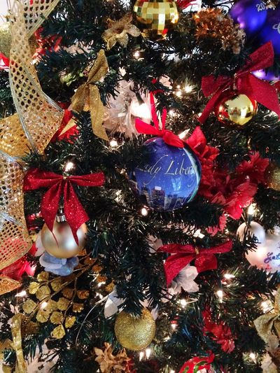 Eye Em Christmas Tree in our Home