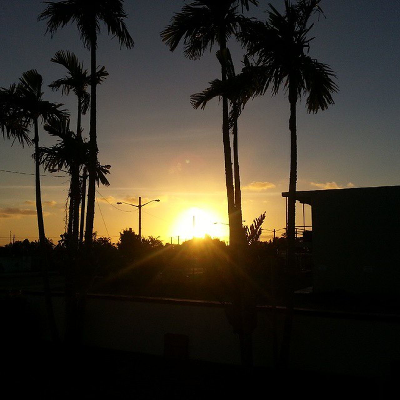 Sunset in the vil 2015  CamelDay Nofilter S3only sunset GUdlife dusk orangecoloredsky silouette