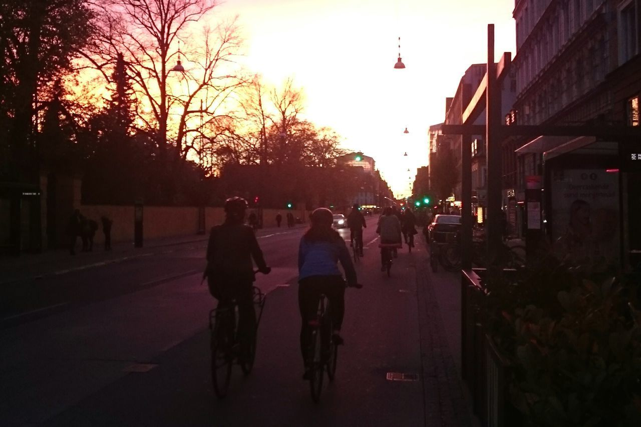 Copenhagen Cycling Denmark Sunset Silhouette Sky People Outdoors Adult Tree City Adults Only Only Men Day