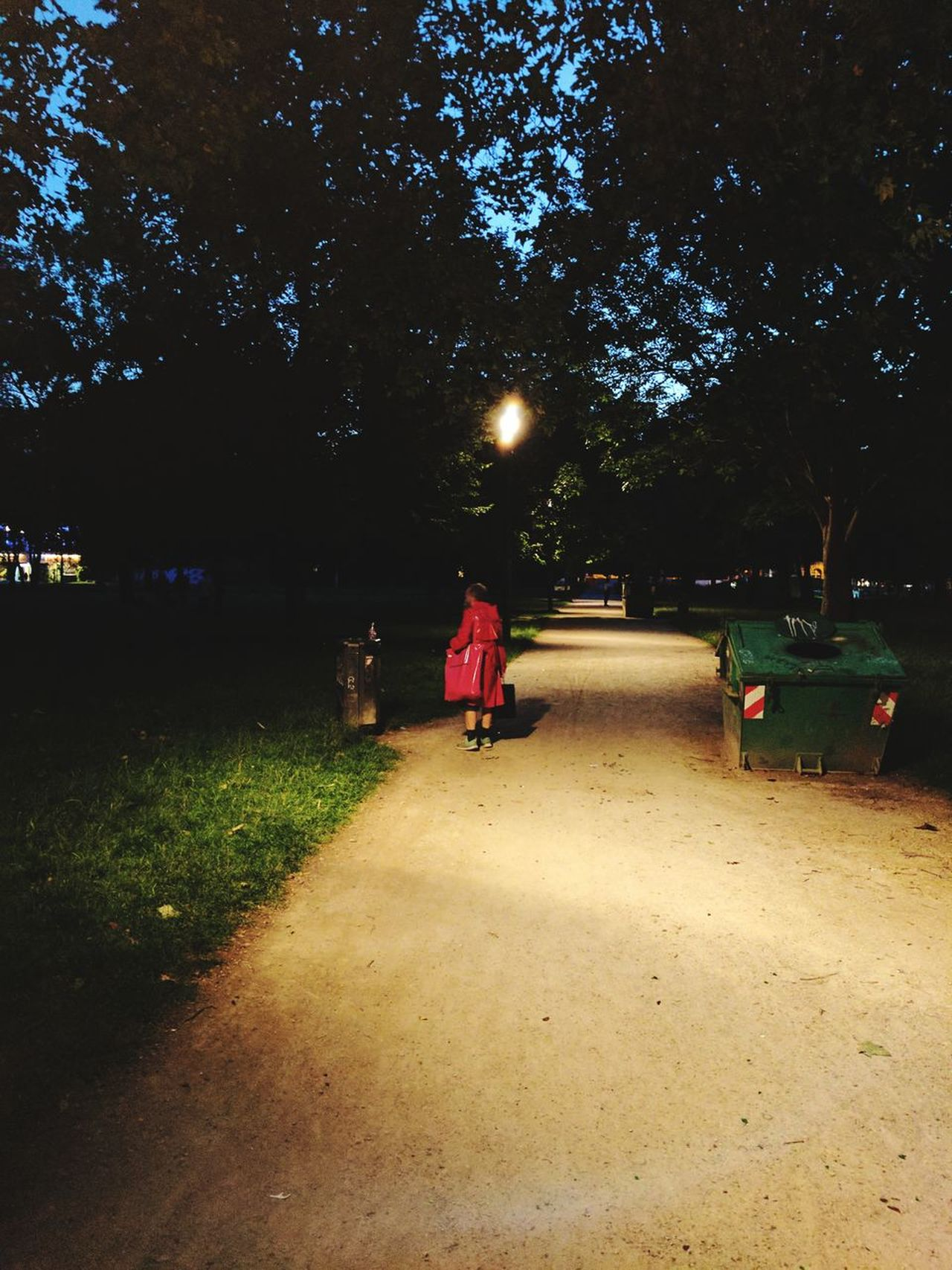 Red Riding Hood. Tree Rear View People Night Outdoors Adult One Person Men Real People Man Red Dress Latex