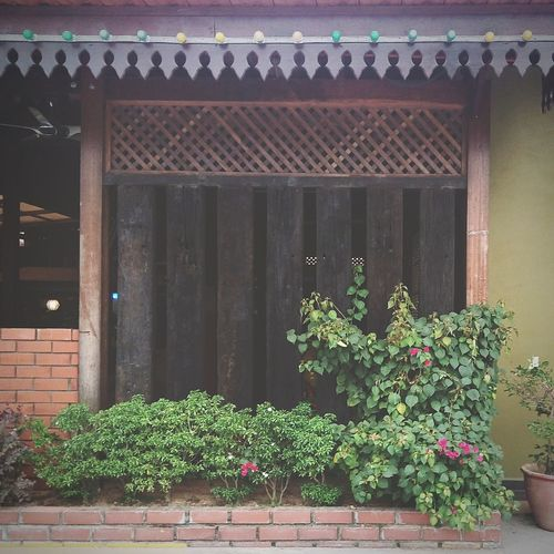 The wall Built Structure Architecture Building Exterior Nature Window Box EyeEm Malaysia Open Edit Phoneography Outdoors Kuang