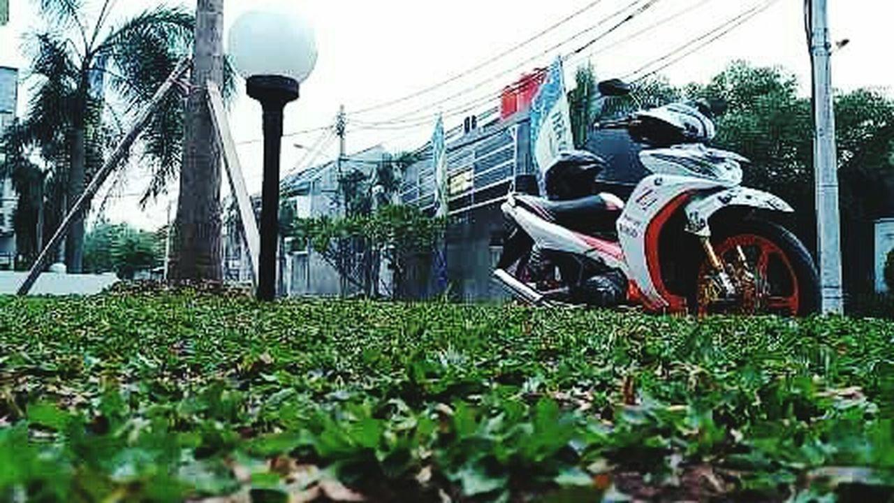 The Great Outdoors With Adobe Yamaha Jupiter Z1 Jupiter Z1