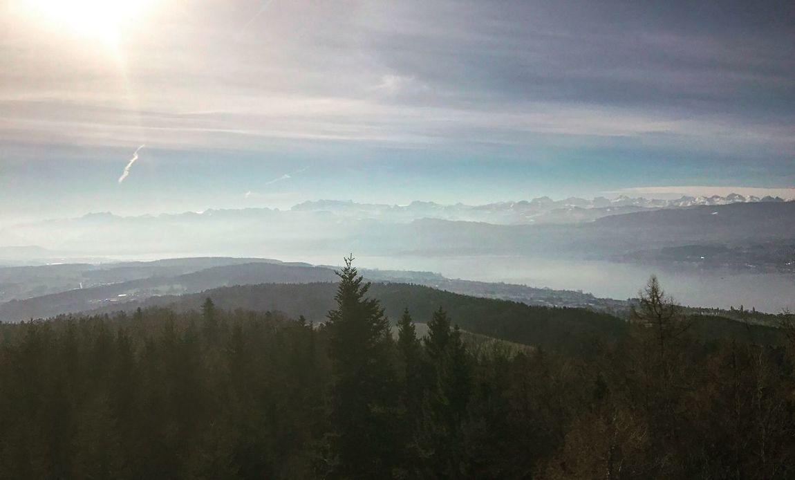 Aussicht Pfannenstiel Zürisee See Nature Landscape Beauty In Nature Sky Sunlight Day