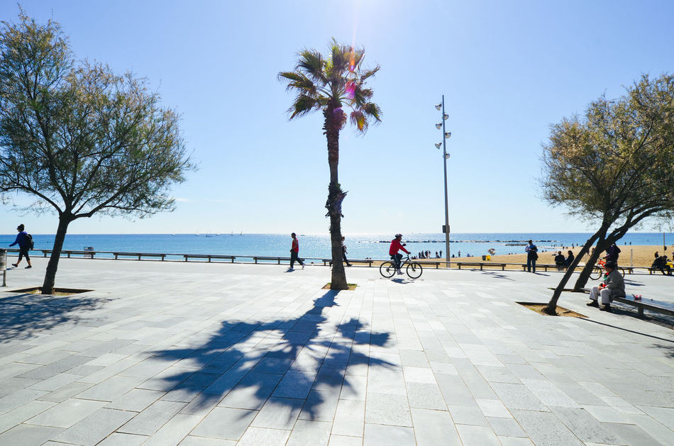 Beautiful stock photos of spain,  Barcelona,  Day,  Growth,  Horizon Over Water