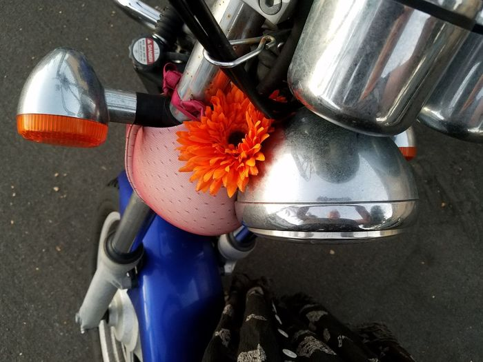 Straight from the camera girl with bra flower on a motorcycle collection Outdoors Close-up Just Shooting Around!! Motorcycle, Motorcycle Lifestyle Bra On A Motorcycle Fun Photography Flower No People Day Straight From The Camera Motorcycle Photography Collection Of The Day
