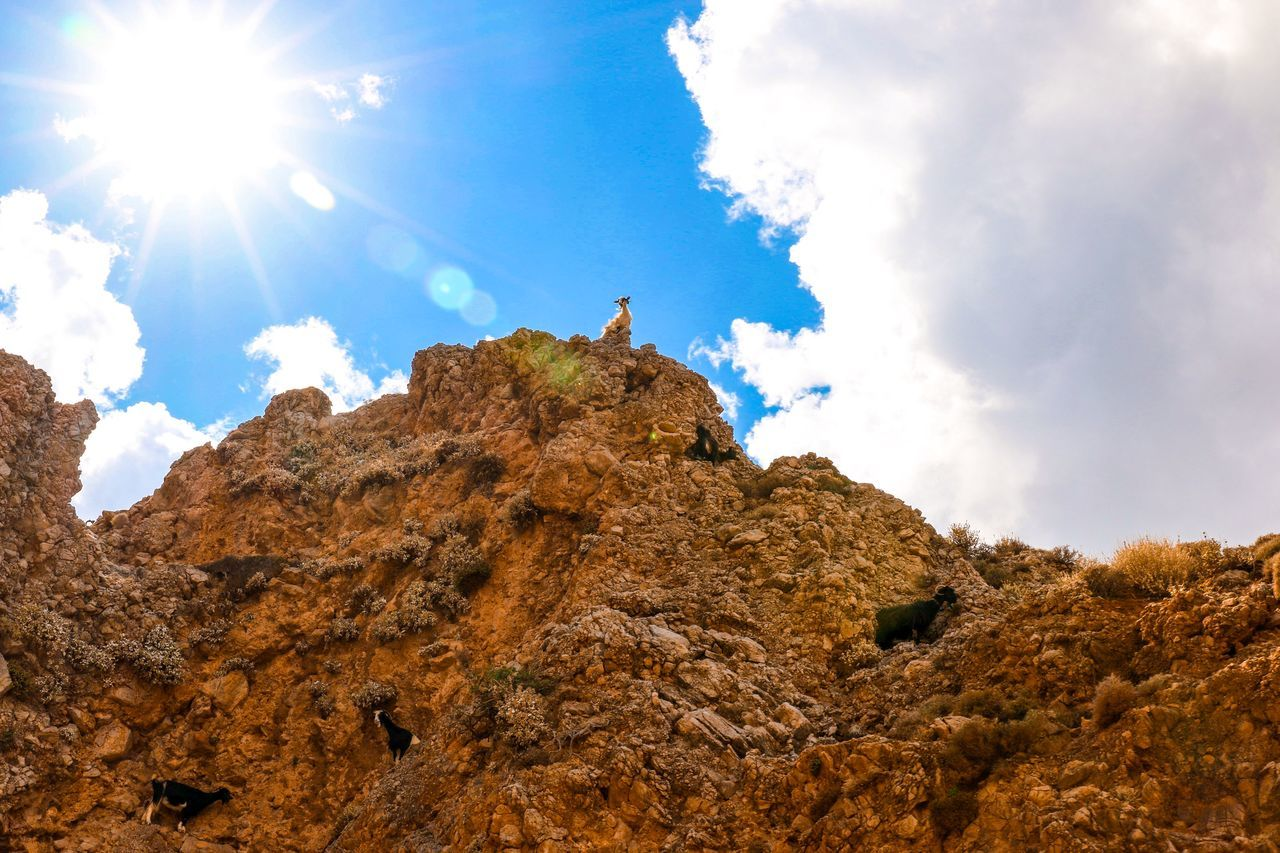Beautiful stock photos of goat, Beauty In Nature, Cloud - Sky, Day, Low Angle View