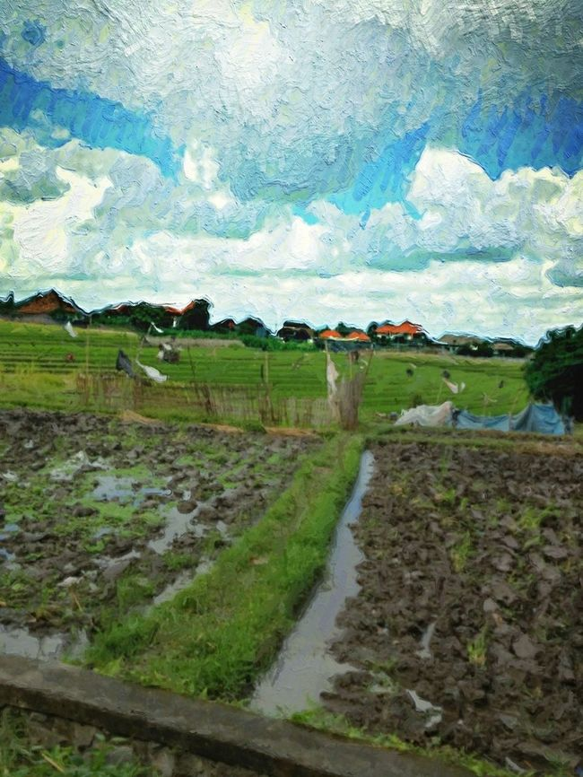 Rice Cultivation in Bali NEM Painterly NEM Submissions EyeEm Indonesia