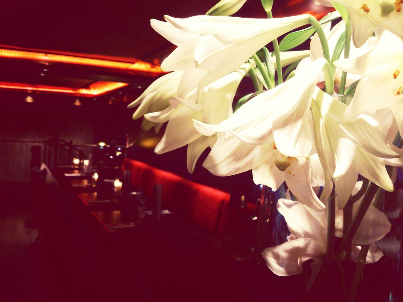 Restaurant Flowers Cosy Food