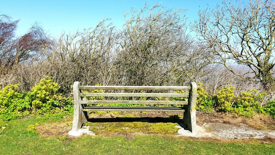 Bench To Nowhere Bench Benches Trees Tree Bushes Sky_collection Tree And Sky Sky And Clouds Sky Nature English Countryside Landscape Clouds And Sky Creative Sea Sea And Sky Blue Sky