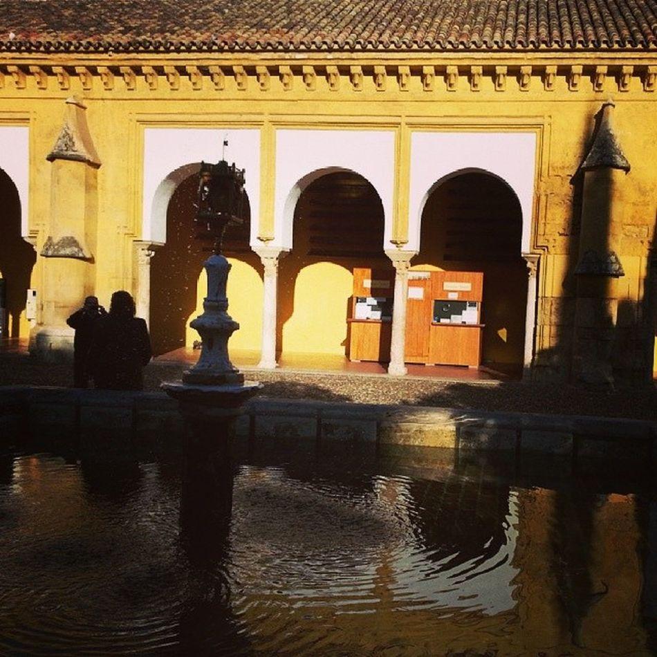 En el Patio de los Naranjos de la Mezquita de Córdoba