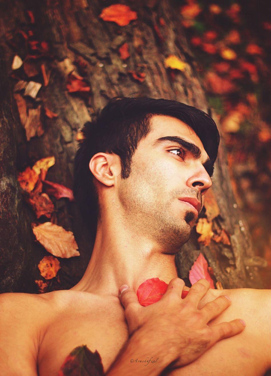 The Dreams Portrait People Arash Afzal Leaf Leaf 🍂