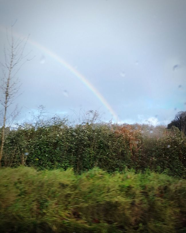 Feel The Journey Somewhere Over The Rainbow
