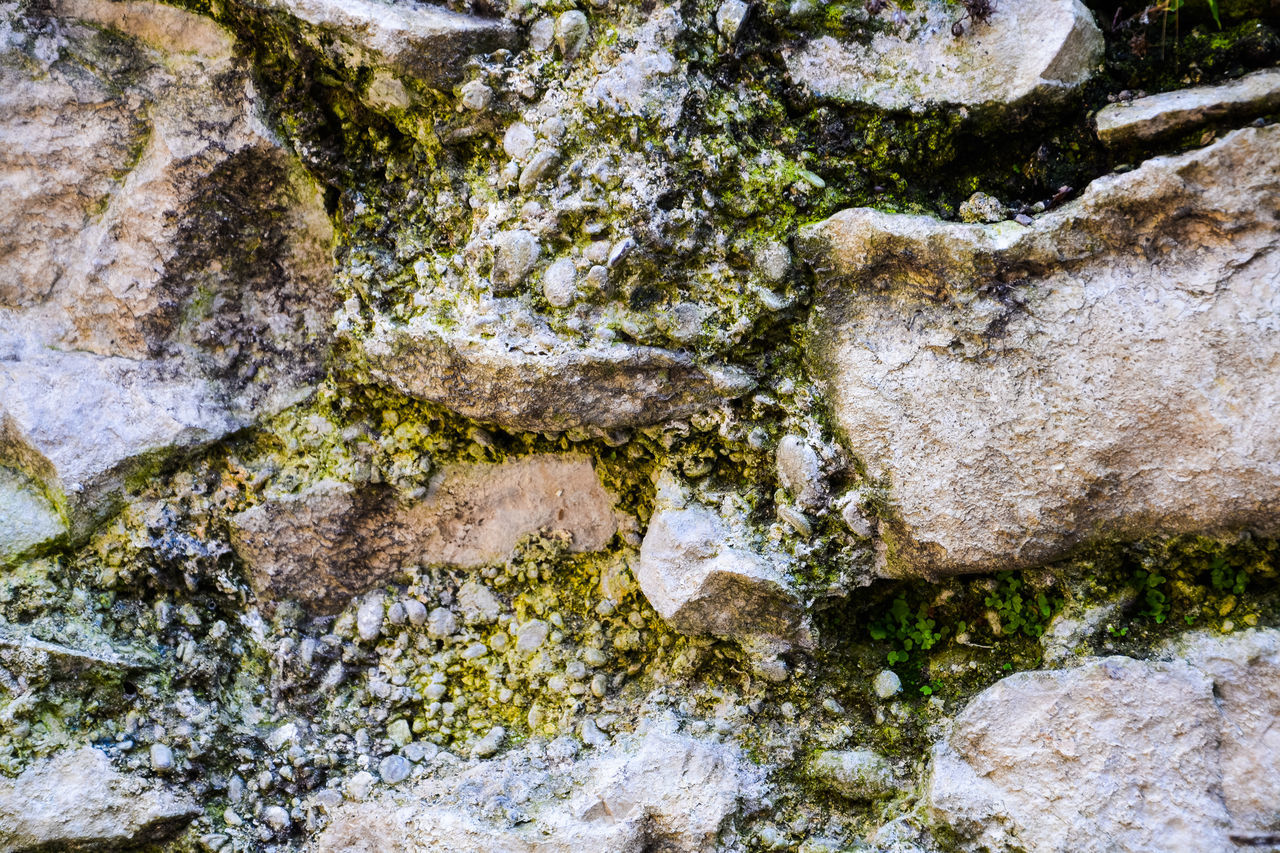 Background of rocks overgrown with green lichen and plants Abstract Backgrounds Close-up Fungus Growth Grunge Lichen Masonry Moss Nature Nature No People Outdoors Rough Stone Structure Textured  Textured  Textures And Surfaces Wall