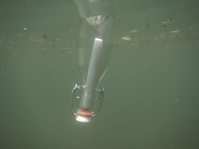 Message in bottle floating underwater. Adventure Bottle Business Close-up Color Communication Day Discovery Floating On Water Hope Ideas Letter Mail Message Message In A Bottle Nature No People Outdoors Rescue Single Object Transparent Travelling Underwater Upside Down Water