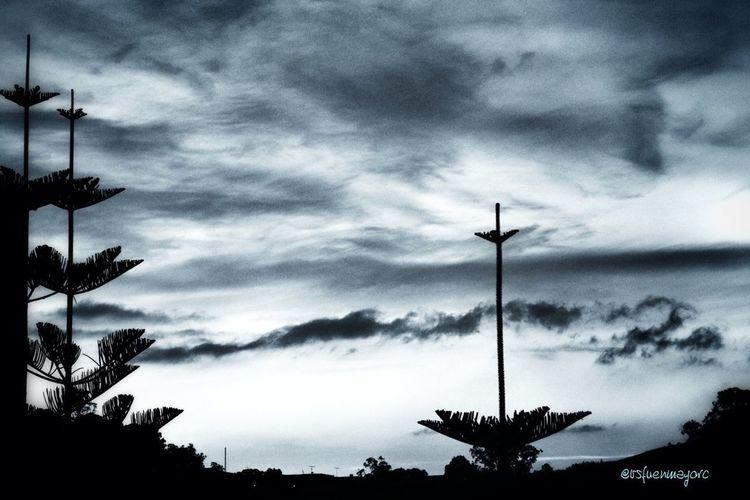 Cloudporn Skyporn Azul Atardecer