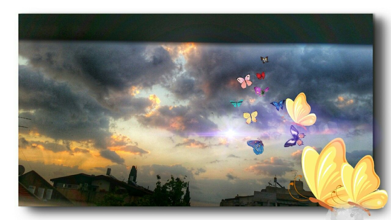 Fantasy World Happy Sunday ... Every Picture Tells A Story Fantasy Edits Sky_collection Butterflies Daydreaming Autopia Imagenation Creative Light And Shadow Color Photography Fly