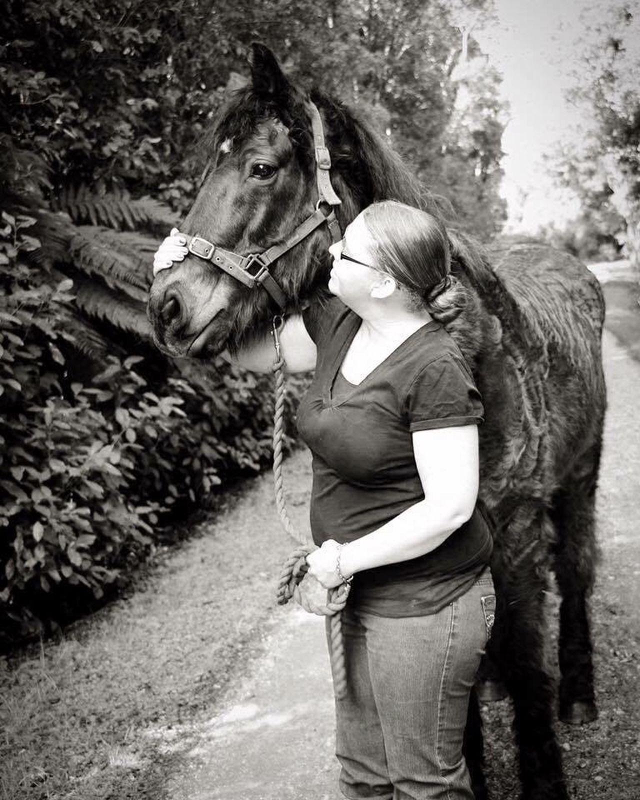 True friendship Horse Equine Equinephotography Portrait Friendship Animal