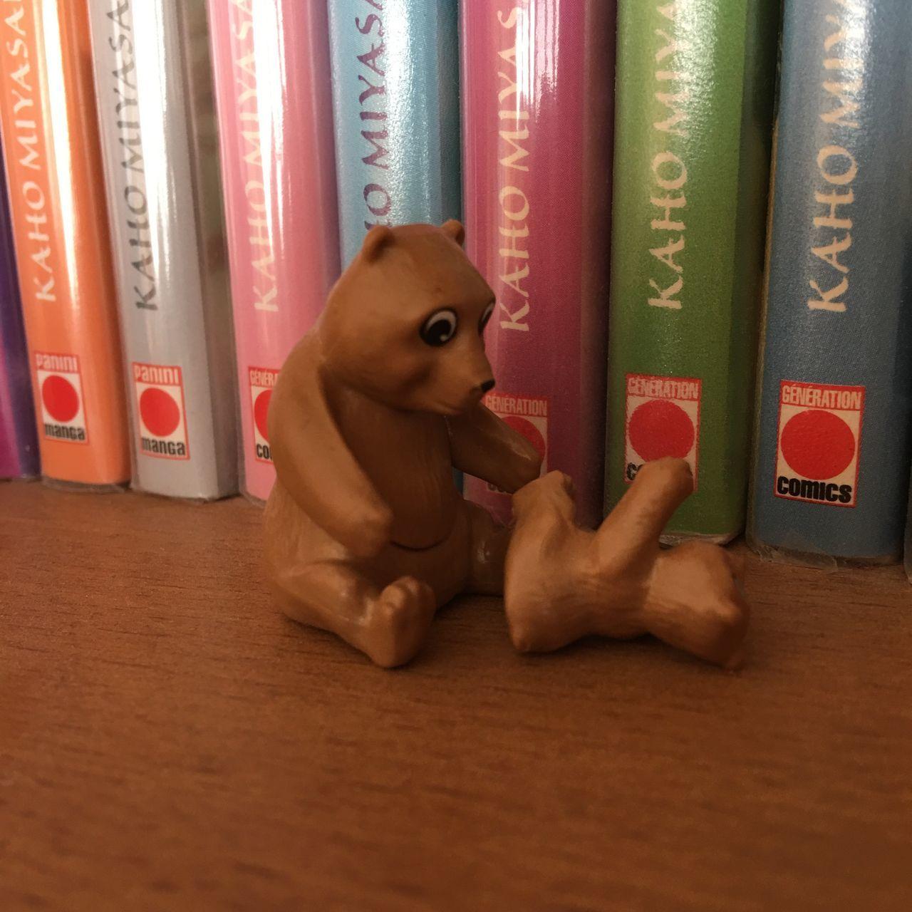 """Baby bear has fallen"" Mammal Animal Themes Indoors  Day Bear Books Manga No People Brown Emotions Toys"