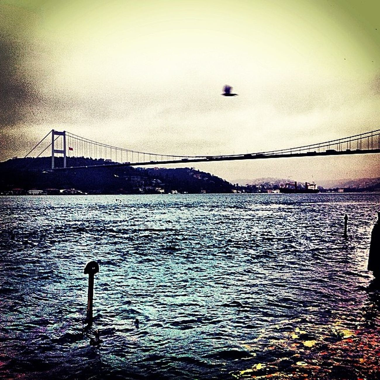 Sancaktepe First Eyeem Photo Hello World Taking Photos Hi! ıstanbul