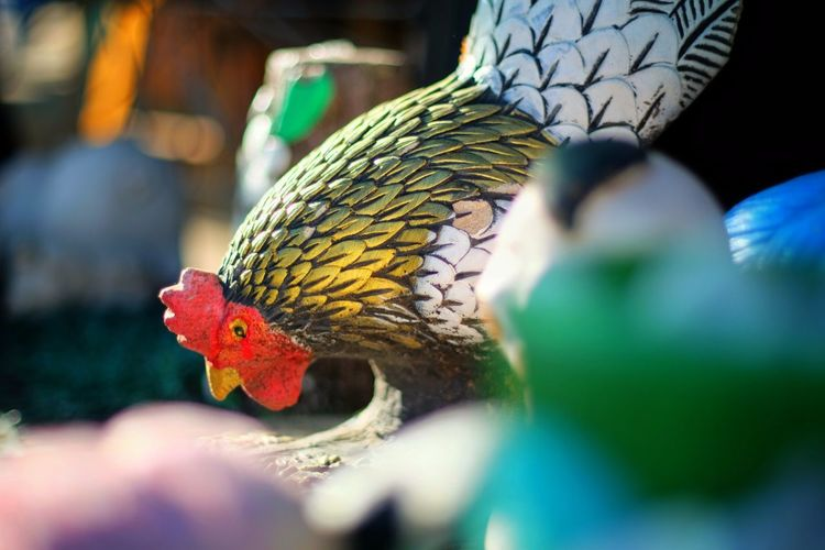 ปีระกา 2560 Animal Themes Ceramic Ceramic Art Ceramics Chicken Chicken Ceramic Nature No People Outdoors Rooster