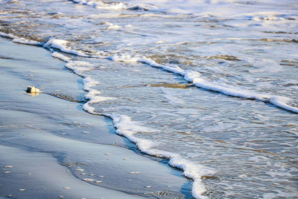 Water Beach Nature Wave No People Sea Sand Beauty In Nature Oyster  Horizon Over Water Beach Photography Beach Life Eye4photography  Eye4nature EyeEm Best Shots - Nature Sea And Sand Froth Foam Sea Life Seascape Low Angle View Close-up Seascape Photography Bretagne France