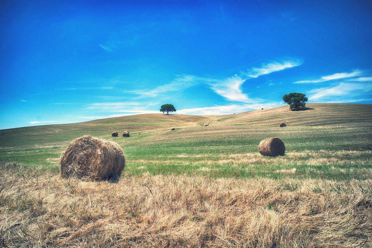 Toscana Toscany Nature Landscape Italy Italia Campo Valley Sky Blue