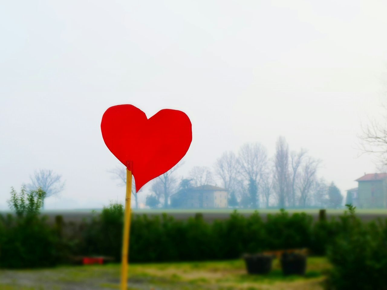 Red Heart Stuck On Stick At Park Against Clear Sky