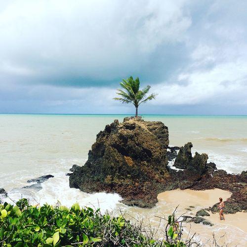 Praia de Tambaba, João Pessoa PB | BR. First Eyeem Photo