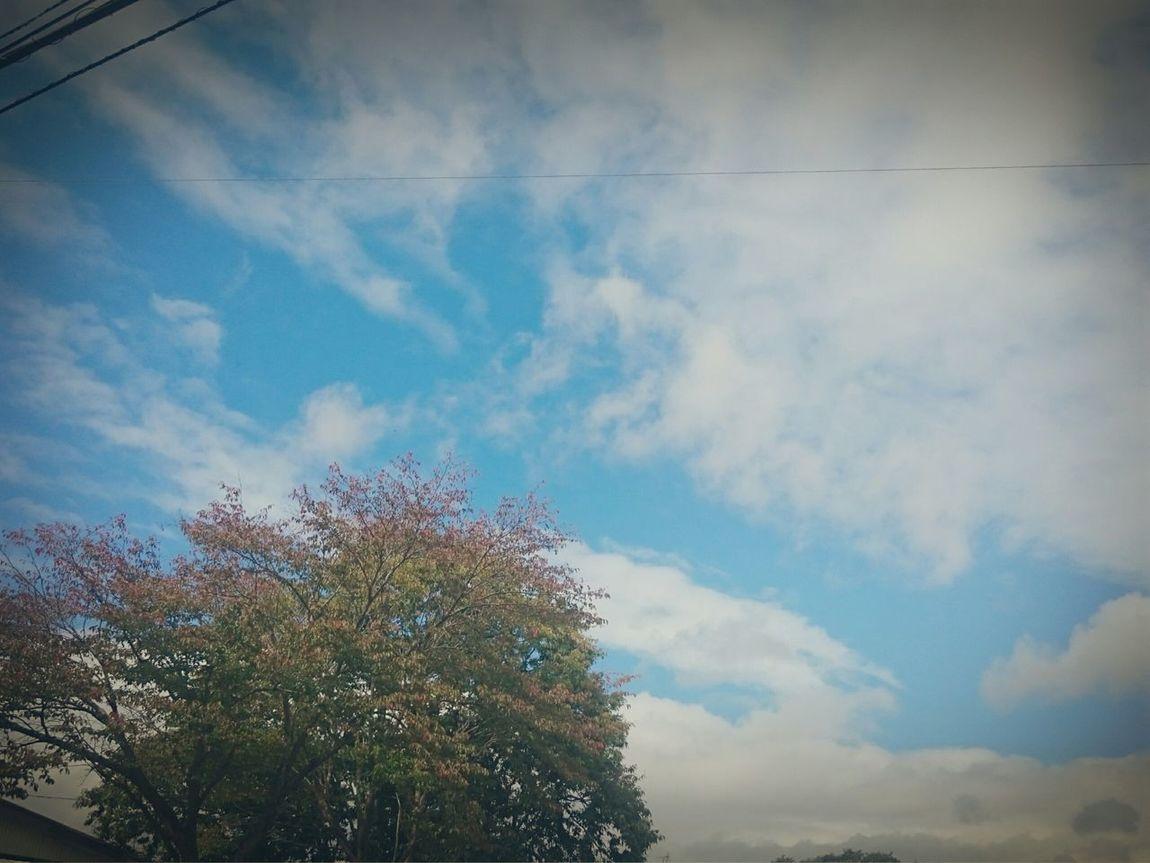 """おはようございます*˙︶˙*)ノ""""☀ 北海道勇払郡安平町 安平町追分地区 外は良い天気☀ 千歳市との境目"""