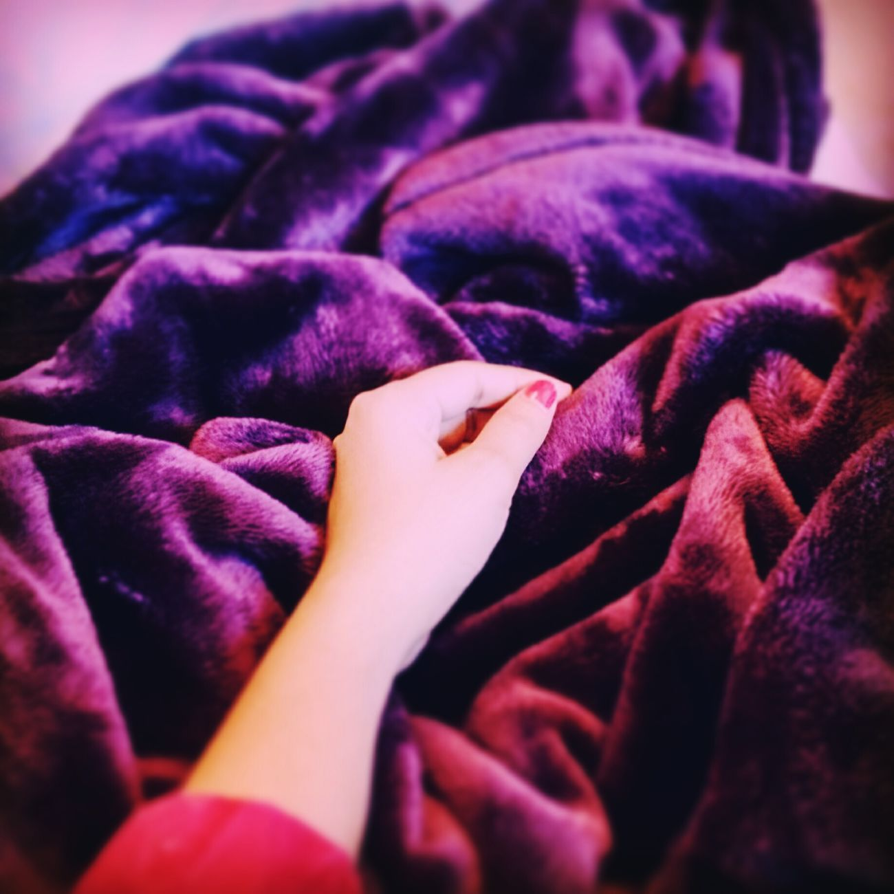Early Morning Blues Dontwannawakeup Frommybed Coldmornings Cosy Home Cosytime Morning Light Butiwannastayinbed Sleepyhead Feelsnice