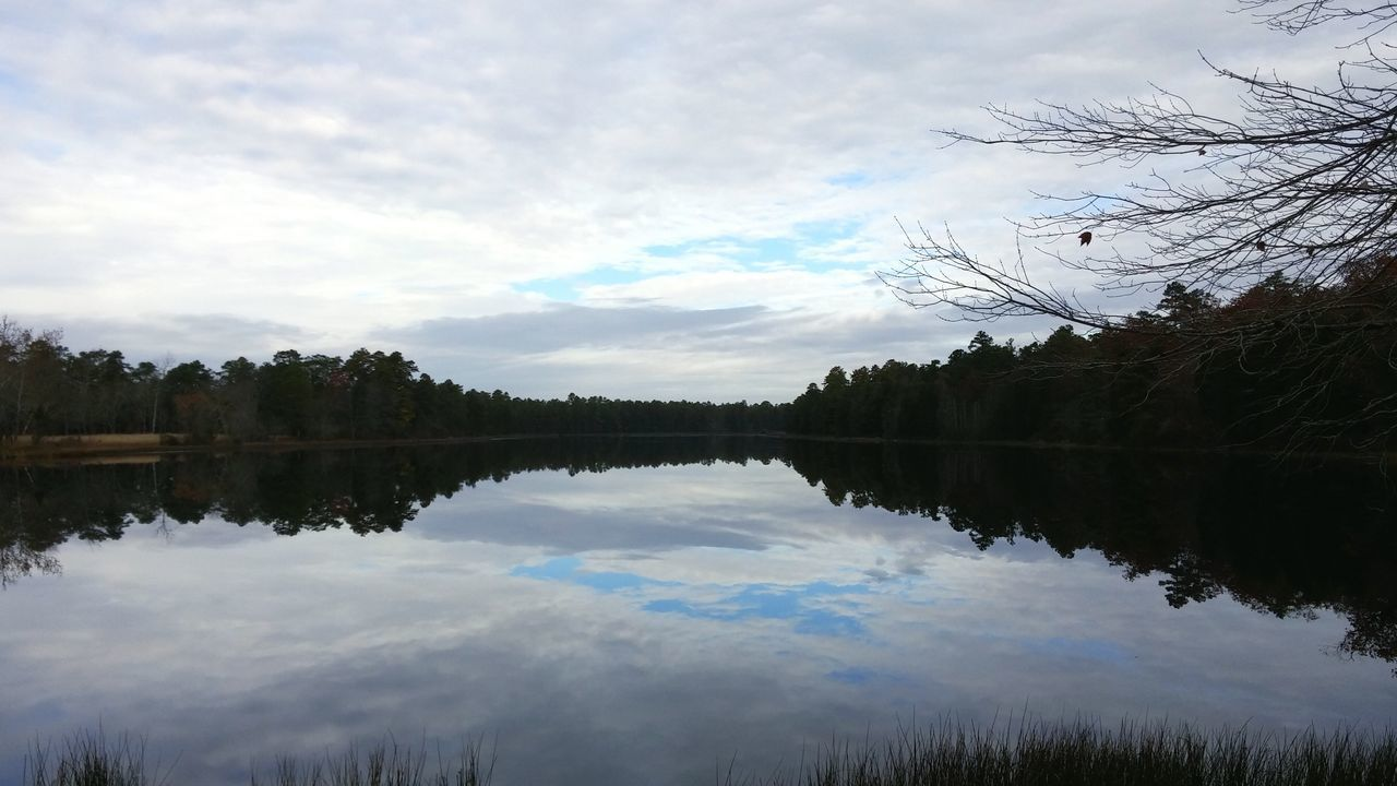 Lake Reflection New Jersey . Forest State Forest Pine Barrens
